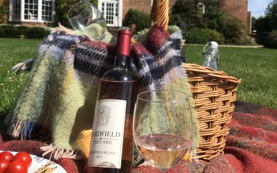 Bardfield Vineyard  Summer Picnic